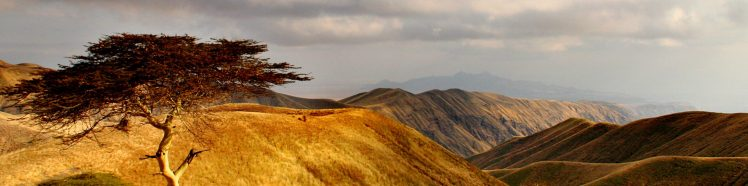 cropped-northern-rift-valley-tanzania-1389242.jpg